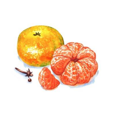 Sticker Mandarine oder Mandarinen isoliert auf weißem Hintergrund