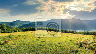 meadow on the hill among the forest. bright summer scenery on a cloudy forenoon. fog start to rise from the valley. mountain ridge in the distance