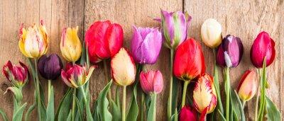 Sticker mehrfarbige Tulpen auf einem hölzernen Hintergrund, Fahne, alte Bretter, Frühlingsblumen, Tulpen auf den Brettern
