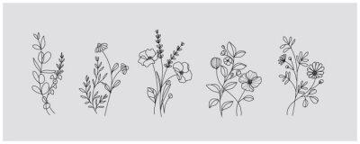 Sticker minimal botanical graphic sketch drawing, trendy tiny tattoo design, floral elements vector illustration