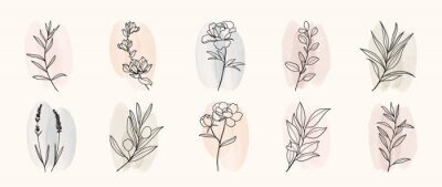 Sticker Minimal botanical hand drawing design for logo and wedding invitation. Floral line art.  Flower and leaves on watercolour background design collection for bouquets decoration, invite, packaging design