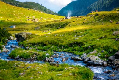 Sticker Mountain river