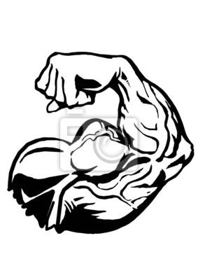 Muskel Hand