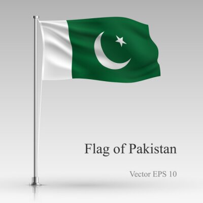 National flag of Pakistan isolated on gray background. Realistic Pakistan flag waving in the Wind. Wavy flag of Pakistan Vector illustration.