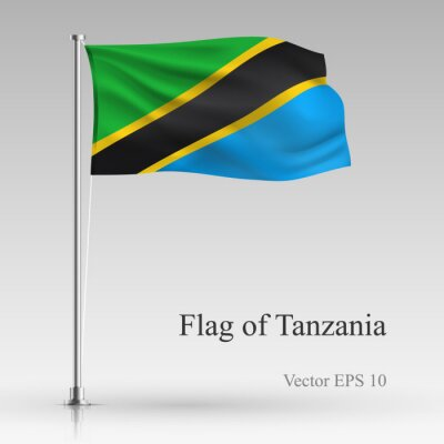 National flag of Tanzania isolated on gray background. Realistic Tanzania flag waving in the Wind. Wavy flag of Tanzania Vector illustration.