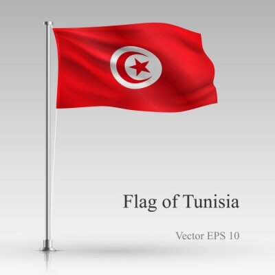 National flag of Tunisia isolated on gray background. Realistic Tunisian flag waving in the Wind. Wavy flag of Tunisia Vector illustration..