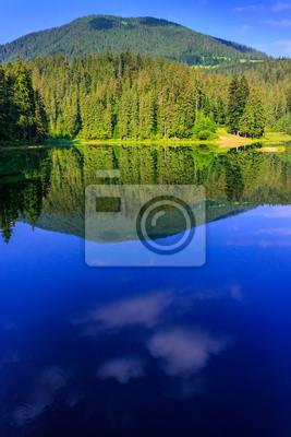 natürlichen Spiegel