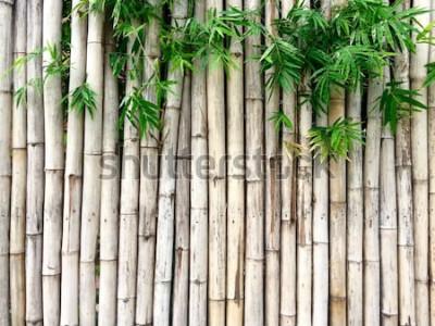 Sticker Natürlicher Bambushintergrund