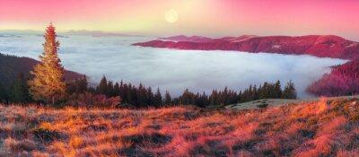 Sticker Nebel im Herbst
