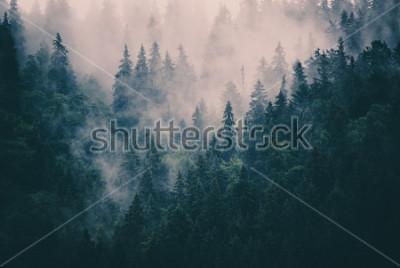Sticker Nebelhafte Landschaft mit Tannenwald im Retro- Stil der Hippie-Weinlese