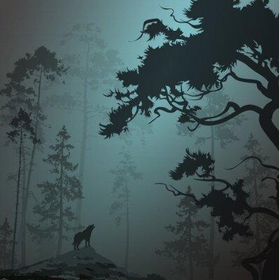 Sticker Nebligen Landschaft mit Silhouette des Waldes, Kiefern und Wolf, Mondschein