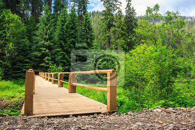 neue Brücke von der Straße zum Wald. horizontal