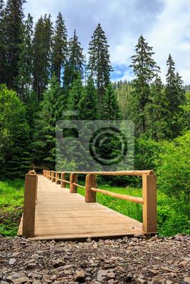 neue Brücke von der Straße zum Wald. vertikalen