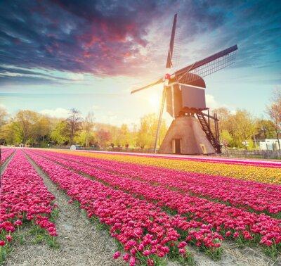Sticker Niederlande