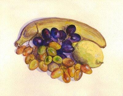 Sticker Obst, Trauben, Zitrone, Banane. Aquarellmalerei