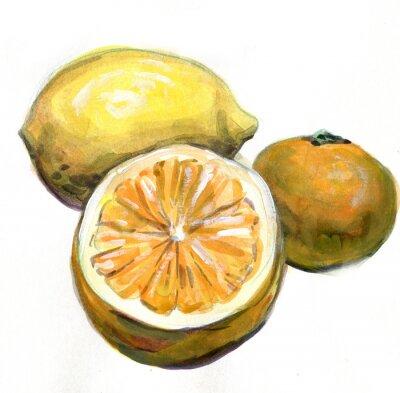 Sticker Orange, Zitrone, Mandarine. Zitrusfrüchte. Aquarellmalerei