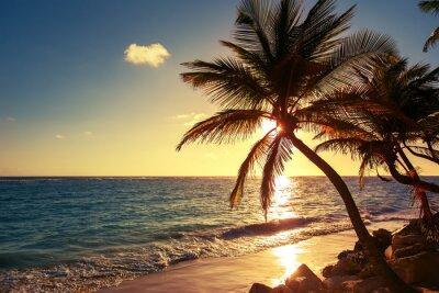 Sticker Palme am tropischen Strand