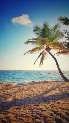 Sticker Palme auf einer tropischen Insel