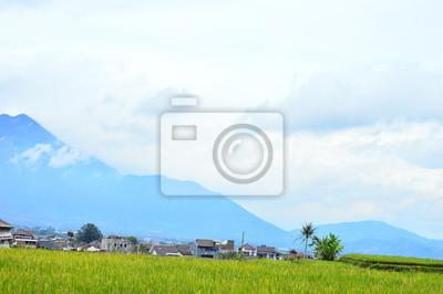 Panorama des Reisfeldes. Garut, Indonesien