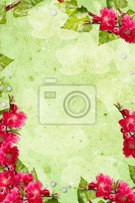 Pastell Frühjahr Hintergrund mit Orchideen