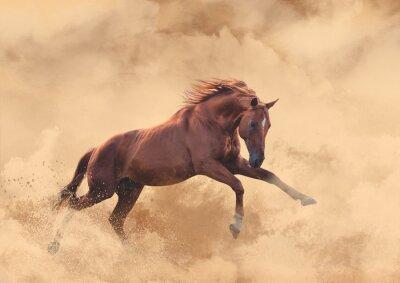 Sticker Pferd