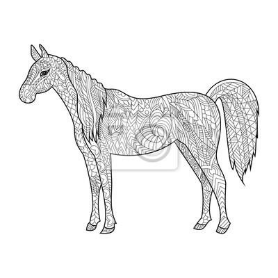 Pferd Ausmalbilder Für Erwachsene Vektor Notebook Sticker