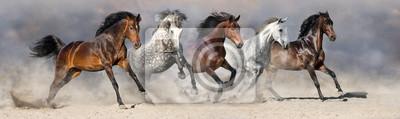 Pferde laufen im Sand gegen drastischen Himmel schnell