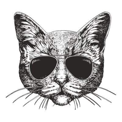 Sticker Portrait of Cat with sunglasses. Hand-drawn illustration. Vector