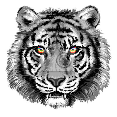 Sticker Powerful tiger with bright eyes