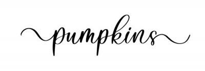 Sticker Pumpkins - vector brush calligraphy banner.