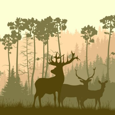 Sticker Quadratische Darstellung der wilden Elch am Rande des Waldes.