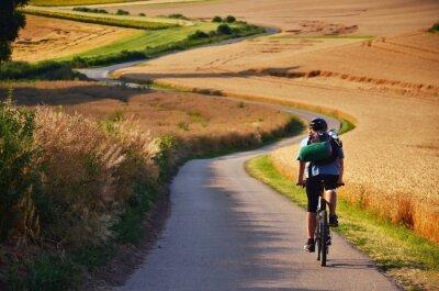 Radfahrer Reiten auf Radweg durch Sommer landwirtschaftliche Felder, die voll von Gold Weizen sind