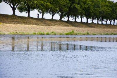 Radfahrer Silhouette am Fluss in der Gasse des Baumes