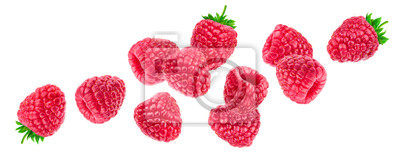 Sticker Raspberry isolated on white background, falling raspberries, collection