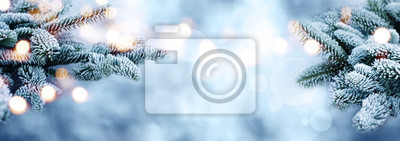 Sticker Raureif bedeckte Tannenzweige mit bokeh im Winter