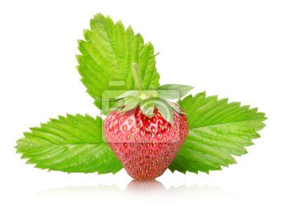 Reife Erdbeeren mit Blättern isoliert