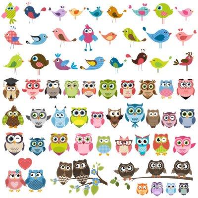 Sticker Reihe von Comic-bunte Vögel und Eulen