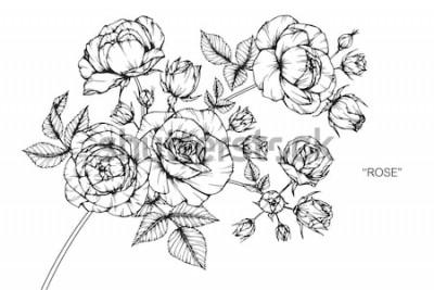 Sticker Rosenblumen zeichnen und skizzieren mit Strichzeichnungen auf weißen Hintergründen.