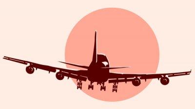 Sticker Round logo illustration of flying airplane.