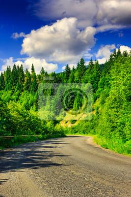 Route durch die Berge im Kiefernwald an einem Sommertag Eveni