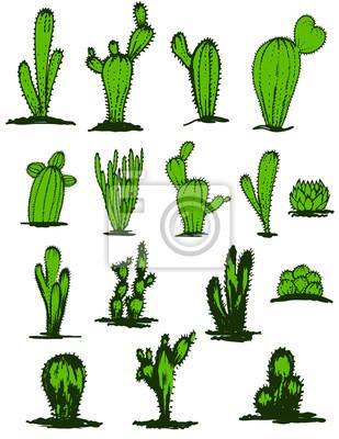Sammlung Hand gezeichnet grünen Kakteen, Vektor-Illustration. Verschiedene Arten von Kaktus Pflanzen realistische dekorative Symbole isoliert. Bunt