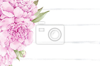 Satz der Aquarellpfingstrosenblume lokalisiert auf weißem Hintergrund. Von Hand gezeichnete Illustration.