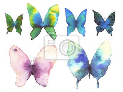 Schmetterling Aquarell Abbildung