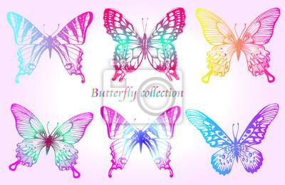 Schmetterling bunten Satz. Insekt Skizze Sammlung für Design und Scrapbooking, Vektor Hand gezeichnete Illustration, Silhouette, isoliert