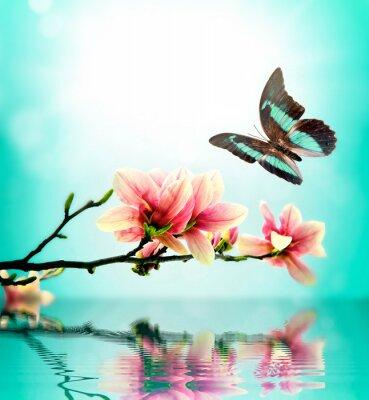 Sticker Schmetterling und Blume magnolia