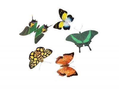 Sticker Schmetterlingsdesign