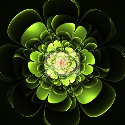 Schöne grüne Blume auf schwarzem Hintergrund. Computer generierte g