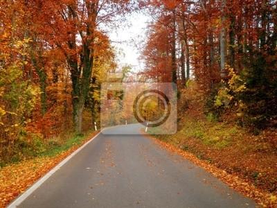 Schöne Herbst-Straße