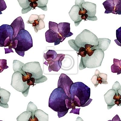 Schöne Orchidee flower2