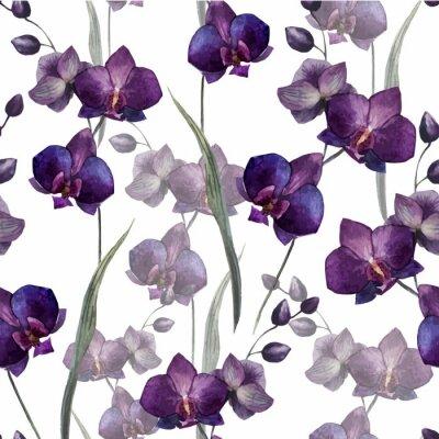 Schöne Orchidee flower4